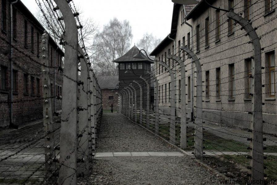 libri di memorie olocausto elie wiesel notte