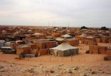 fronte polisario saharawi sahara occidentale