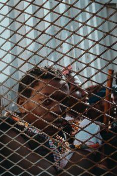 Centri di permanenza per il rimpatrio (Cpr), migranti