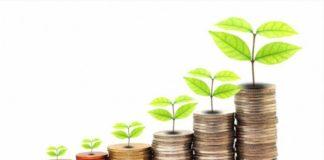 Crisi Ecologica e la menzogna del Capitalismo Verde