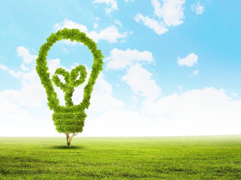 Sviluppo sostenibile e difesa ambientale: dalla teoria alle buone pratiche