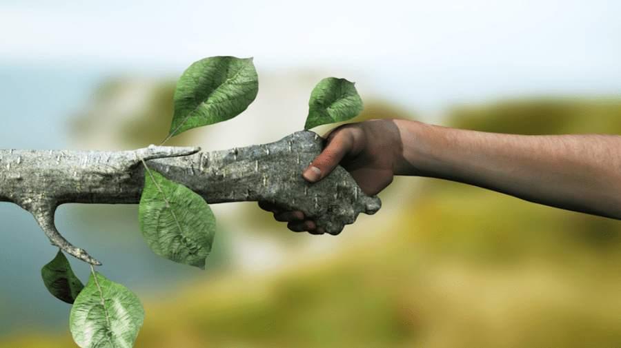 Guida terrestre per ambientalisti: la tutela dell'ambiente ogni giorno