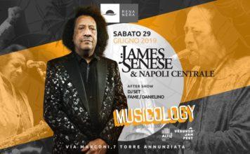 James Senese, 50 anni di musica italiana