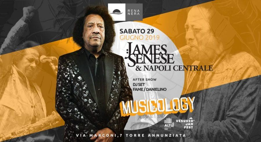 James Senese, 50 anni di musica italiana