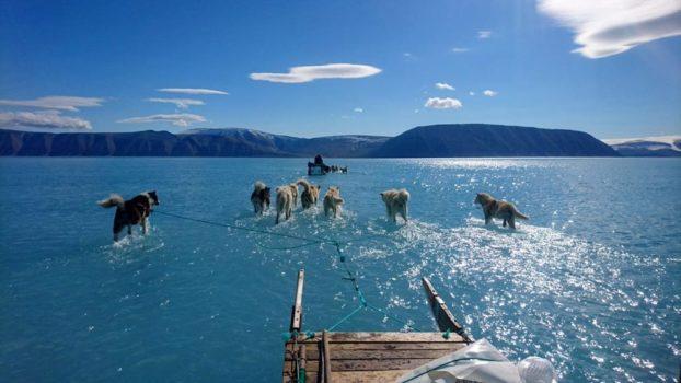 Cambiamenti climatici, social network, ambiente: la fine della Terra