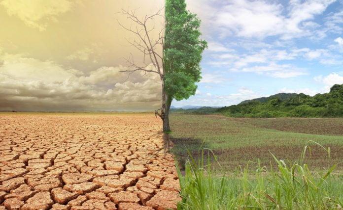 Agricoltura e cambiamenti climatici: l'insicurezza alimentare italiana