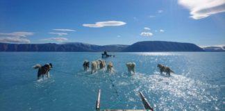 Non solo incendi. Nell'Artico le conseguenze del Climate Change saranno enormi.