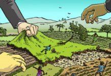 "Si scrive ""Land Grabbing"", si legge neocolonialismo"