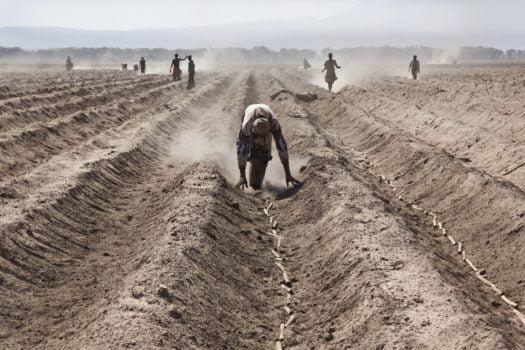 Land Grabbing neocolonialismo