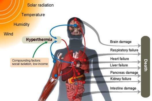 Ondate di calore: entro il 2100 il 74% della popolazione mondiale sarà a rischio