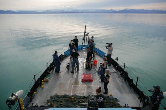 Sea of Shadows Trafficanti di mare
