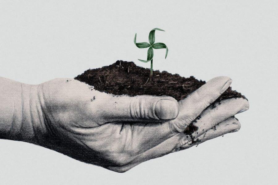 Ecofascismo, cos'è e perché non può essere considerato ambientalismo