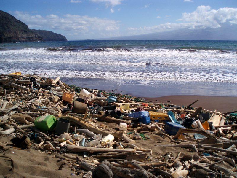 Packing alimentare - spiagge - plastica