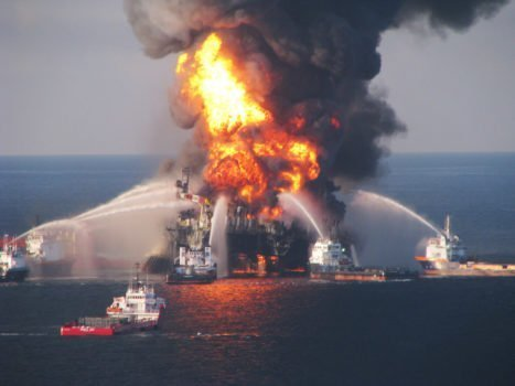 Nel Golfo del Messico i pesci sono imbottiti di idrocarburi