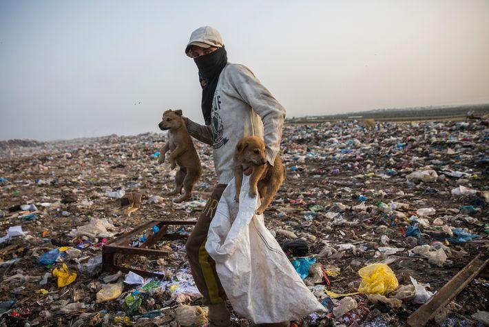 Plastica nella Striscia di Gaza: tra lotta per la sopravvivenza e tutela dell'ambiente