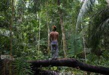 Popoli indigeni e deforestazione: tra Covid-19 e follia di Bolsonaro