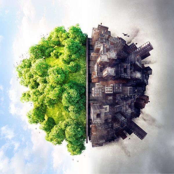 Sociologia dell'ambiente: relazione di crisi tra natura e società