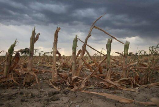 clima estremo condizioni desertiche