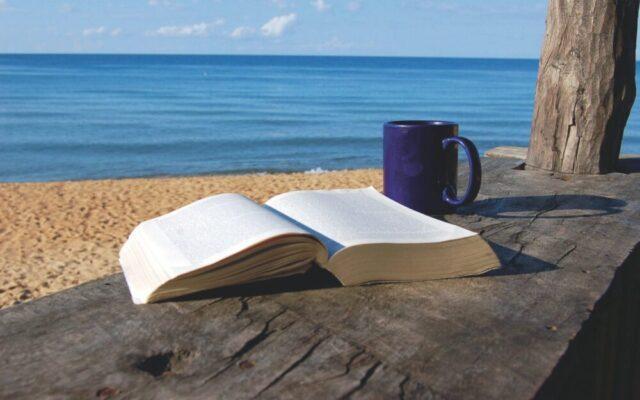 Fuster e il Dizionario per oziosi: conoscersi come con Socrate sotto l'ombrellone