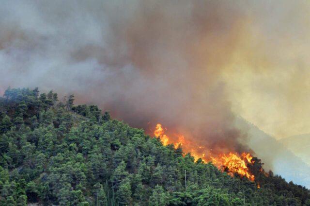 L'Italia che brucia: esiste un legame tra incendi e cambiamenti climatici?
