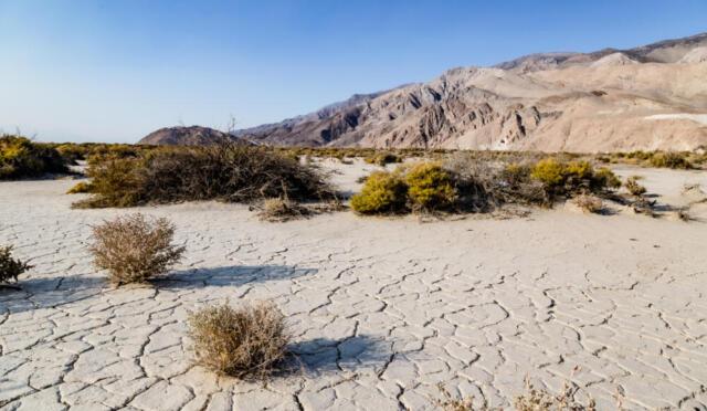 Crisi climatica: quanto ci costerà l'eredità di Donald Trump