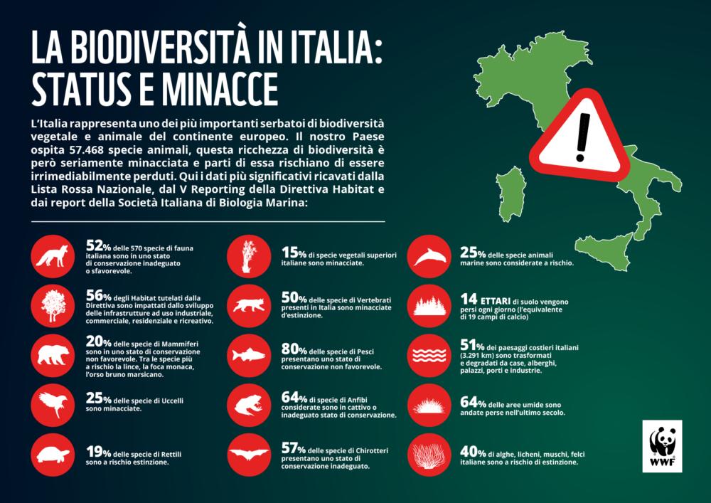 In Italia la biodiversità rischia di cadere nel dimenticatoio