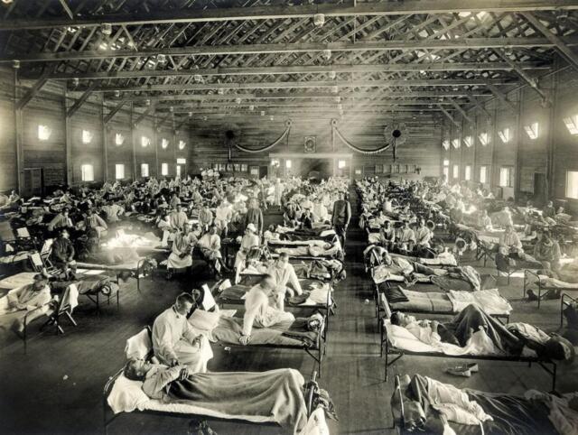 Storia pandemie scienza medica