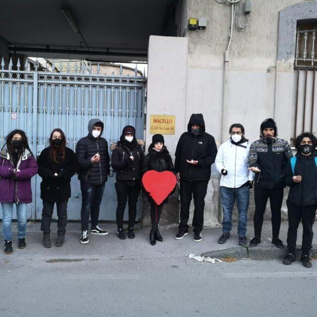 Napoli Animal Save tra diritti animali e disobbedienza civile