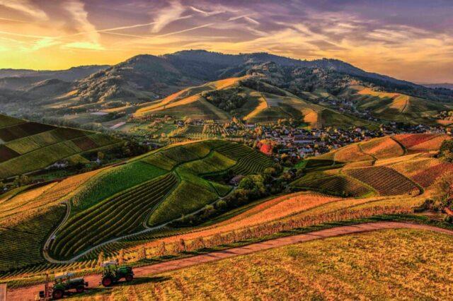 Biodistretti: un patto per lo sviluppo sostenibile delle aree rurali