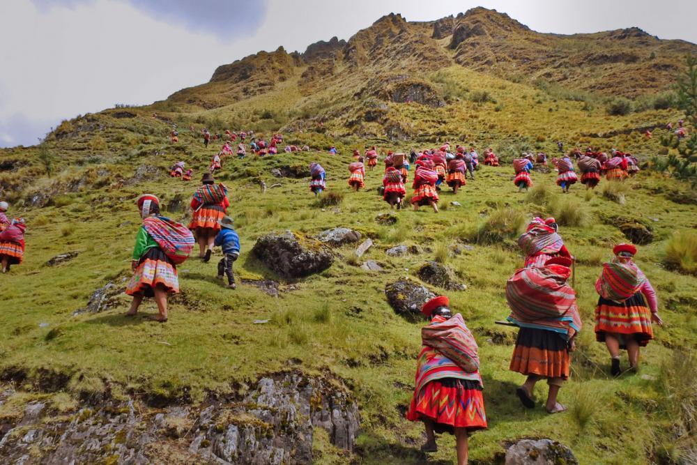 Ande, cambiamento climatico, biodiversità, deforestazione, comunità indigene