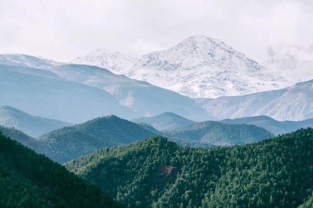 Servizi ecosistemici: quanto vale la tutela della natura?