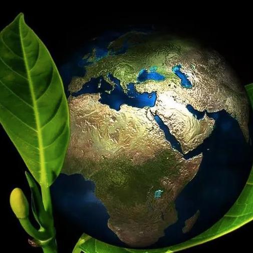 Ambientalismo Democratico