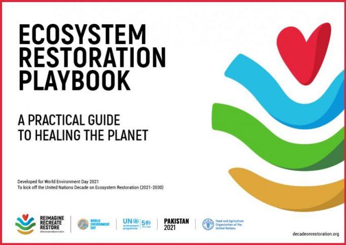 Ecosystem Restoration PlayBook: la guida dell'UNEP per il ripristino degli ecosistemi