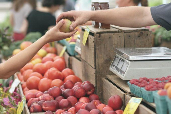 Sovranità alimentare: in Emilia Romagna l'agroecologia applicata