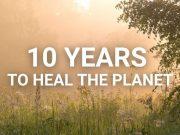 Giornata mondiale dell'ambiente - ecosistemi
