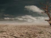 Emergenza siccità in tutta Italia: da nord a sud si contano i danni