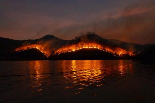 Il fumo degli incendi boschivi aggrava la pandemia da Covid-19