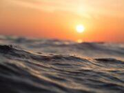 Oceani fuorilegge: in viaggio verso l'ultima frontiera selvaggia